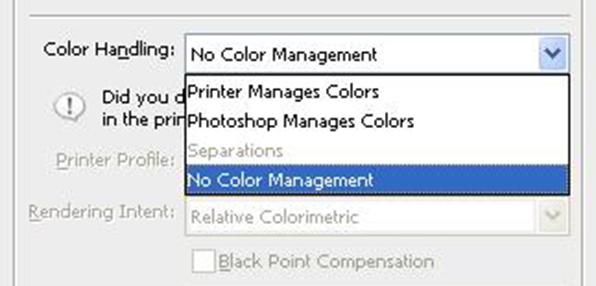 epson 9900 no color management option