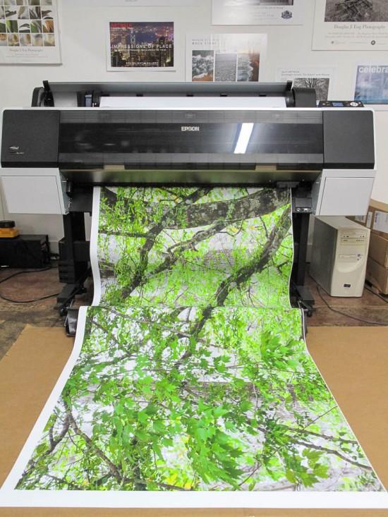 Epson Print Length
