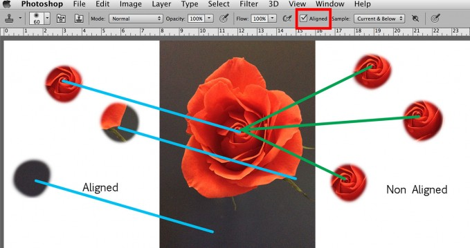 cloning an image in photoshop