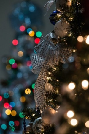 How to photograph ornaments