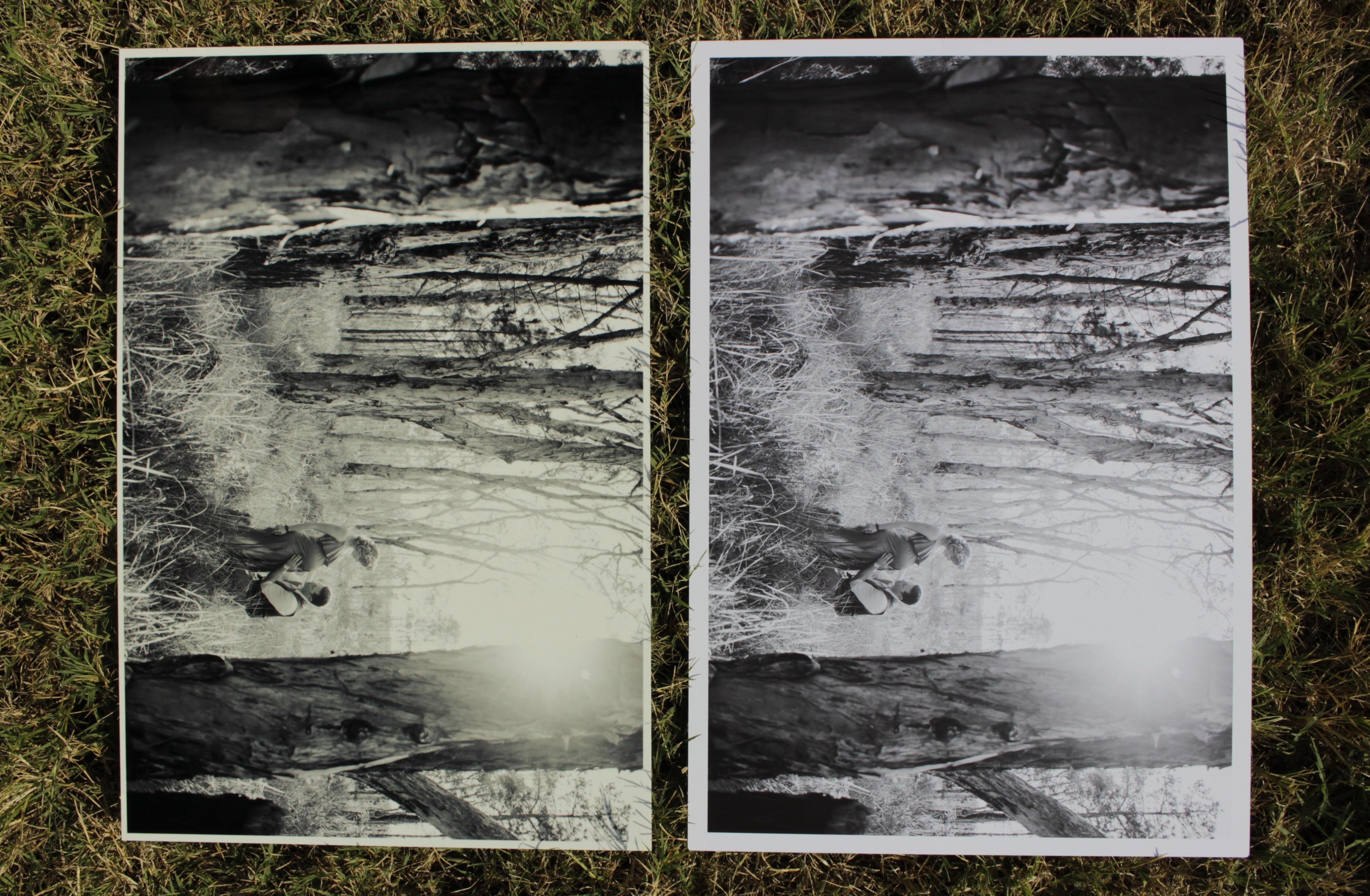 metal prints white point