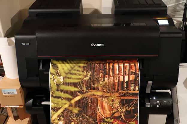 Canon PRO-4000 Printing Art Peel