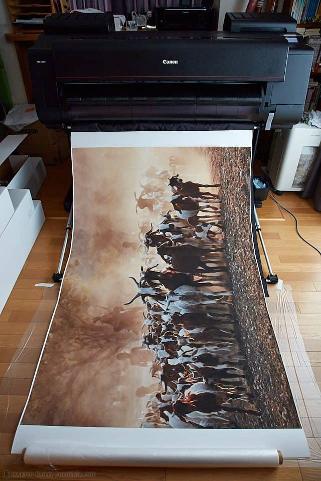 Large Signa Print on Canon PRO-4000